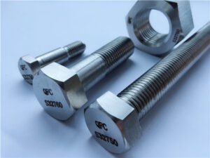 No.53-F55 S32760 1.4501 2507 HEX NUTS & BOLTS FASTENERS